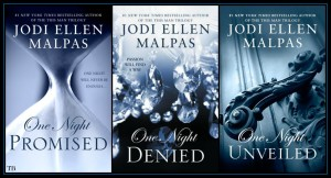 one night series books