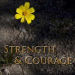 Strength & Courage (The Night Horde SoCal #1) by Susan Fanetti - 31st Jan