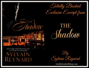 The Shadow Excerpt